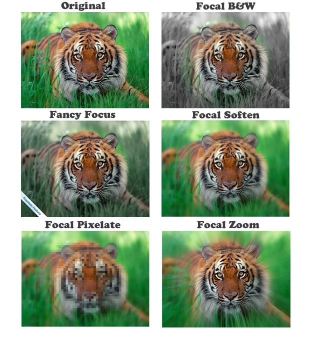 picnik Focal effects