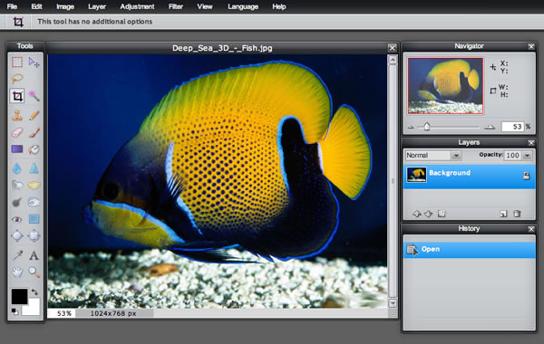 Online Photo Editing Software pixlr